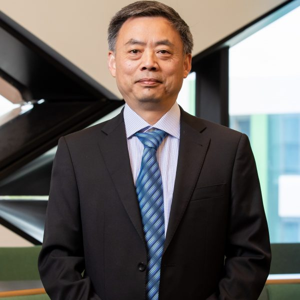 Prof Lin Ma